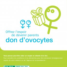 Ovocytes flyer